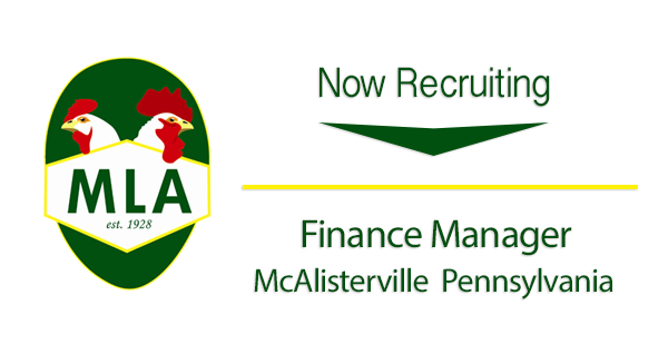 Finance Manager MLA IN HIS Name HR LLC 2016